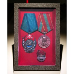 Grandfathers medals 10x15cm (by Vladimir)