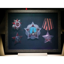 Awards of the USSR Order of Victory (by Vladimir) 15x20cm