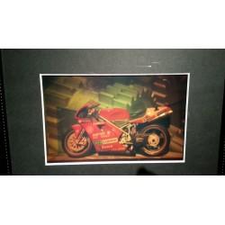 Ducati (par Kris) 20x13cm