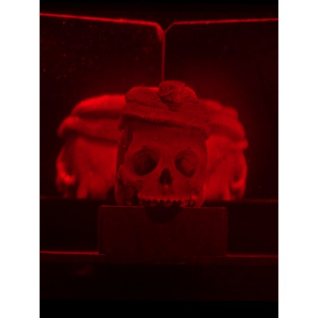 The skull and the snake 10x10cm (Monochrom Red)