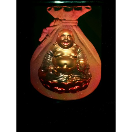 Bouddha 15x20cm